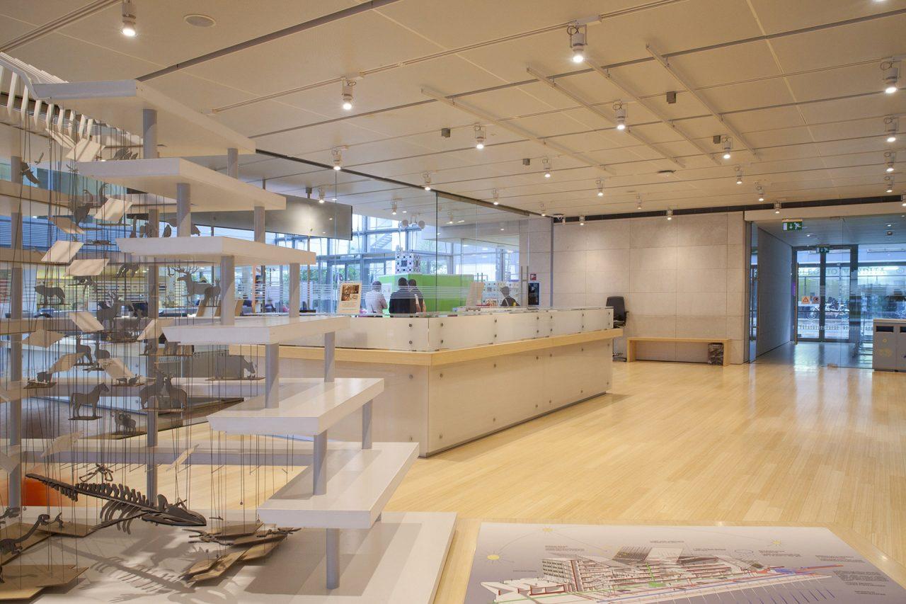 Bancone del MUSE in legno di bambù - Corazzolla